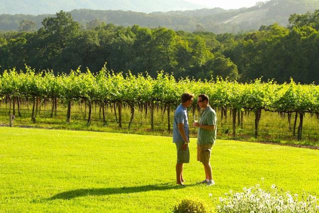 Sonoma - Gay Wine Weekend 2014